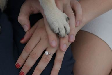engagement clifton nj